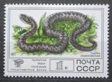 Poštovní známka SSSR 1977 Zmije obecná Mi# 4678