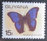 Poštovní známka Guyana 1978 Eryphanis polyxena Mi# 544