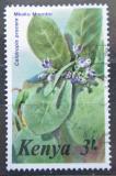 Poštovní známka Keňa 1985 Sodomské jablko Mi# 340 Kat 4.50€