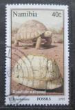 Poštovní známka Namíbie 1995 Fosílie Mi# 789