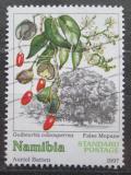 Poštovní známka Namíbie 1997 Guiburtia coleosperma Mi# 867