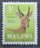 Poštovní známka Malawi 1971 Bahnivec horský Mi# 150