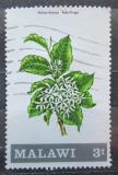 Poštovní známka Malawi 1971 Holarrhena febrifuga Mi# 169