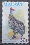 Poštovní známka Malawi 1975 Guinejský kohout Mi# 237