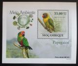 Poštovní známka Mosambik 2010 Papoušci DELUXE Mi# 3507 Block
