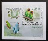Poštovní známka Mosambik 2010 Papoušci DELUXE Mi# 3508 Block