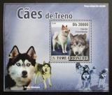 Poštovní známka Svatý Tomáš 2008 Tažní psi DELUXE Mi# 3581 Block
