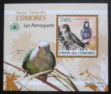 Poštovní známka Komory 2009 Papoušci DELUXE Mi# 2388 Block