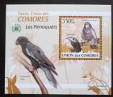 Poštovní známka Komory 2009 Papoušci DELUXE Mi# 2389 Block