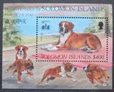 Poštovní známka Šalamounovy ostrovy 1994 Boxer Mi# Block 37 Kat 10€
