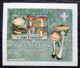 Poštovní známka Svatý Tomáš 2007 Houby DELUXE neperf. Mi# 3004 B Block