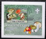 Poštovní známka Svatý Tomáš 2007 Houby DELUXE neperf. Mi# 3007 B Block
