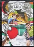 Poštovní známka Mosambik 2013 Stolní tenis Mi# Block 723 Kat 10€