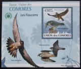 Poštovní známka Komory 2009 Sokoli DELUXE Mi# 2407 Block