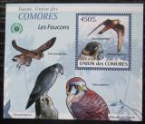 Poštovní známka Komory 2009 Sokoli DELUXE Mi# 2408 Block