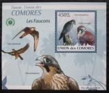 Poštovní známka Komory 2009 Sokoli DELUXE Mi# 2409 Block