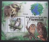 Poštovní známka Mosambik 2011 Sovy Mi# Block 418 Kat 10€