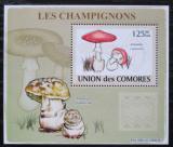 Poštovní známka Komory 2009 Houby DELUXE Mi# 2079 Block