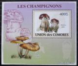 Poštovní známka Komory 2009 Houby DELUXE Mi# 2083 Block