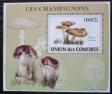 Poštovní známka Komory 2009 Houby DELUXE Mi# 2084 Block