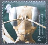 Poštovní známka Velká Británie 2000 Přírodovědecká výstava Mi# 1889