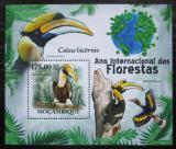 Poštovní známka Mosambik 2011 Dvojzoborožec žlutozobý Mi# Block 418 Kat 10€