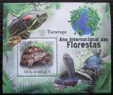 Poštovní známka Mosambik 2011 Želvy Mi# Block 411 Kat 10€