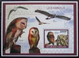 Poštovní známka Togo 2010 Sovy Mi# Block 500 Kat 8€