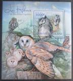 Poštovní známka Togo 2012 Sovy Mi# Block 702 Kat 12€