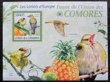 Poštovní známka Komory 2009 Žluva hajní Mi# 2419 Kat 15€