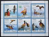 Poštovní známky Komory 2009 Husička vdovka Mi# 2357-61 Kat 9€