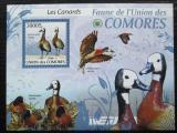 Poštovní známka Komory 2009 Husička vdovka Mi# 2418 Kat 15€