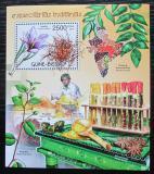 Poštovní známka Guinea-Bissau 2012 Indické koření Mi# Block 1068 Kat 10€