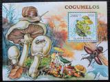 Poštovní známka Guinea-Bissau 2011 Houby Mi# Block 970 Kat 12€