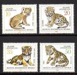 Poštovní známky DDR 1978 Mláďata kočkovitých šelem Mi# 2322-25