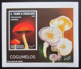 Poštovní známka Svatý Tomáš 2009 Houby DELUXE neperf. Mi# 4024 B Block