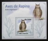 Poštovní známka Svatý Tomáš 2009 Výr virginský DELUXE Mi# 4268 Block