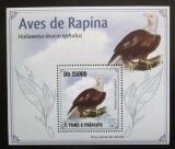 Poštovní známka Svatý Tomáš 2009 Orel bělohlavý DELUXE Mi# 4269 Block