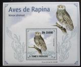 Poštovní známka Svatý Tomáš 2009 Sovka statná DELUXE Mi# 4270 Block
