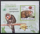 Poštovní známka Komory 2009 Lemur DELUXE neperf. Mi# 2462 B Block