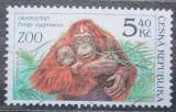 Poštovní známka Česká republika 2001 Orangutan Mi# 302