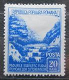 Poštovní známka Rumunsko 1953 Měsíc lesů Mi# 1439