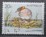 Poštovní známka Austrálie 1978 Potápka malá Mi# 655