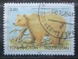 Poštovní známka Tádžikistán 1993 Medvěd plavý Mi# 22