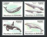 Poštovní známky Burundi 2011 Velryby Mi# 2038-41 Kat 9.50€