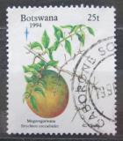 Poštovní známka Botswana 1994 Strychnos spinosa Mi# 575