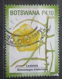 Poštovní známka Botswana 2011 Xenostegia tridentata Mi# 942