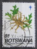 Poštovní známka Botswana 1991 Harpagofyt ležatý, vánoce Mi# 501