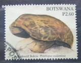 Poštovní známka Botswana 2007 Houby, Phlebopus sudanicus Mi# 848