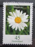 Poštovní známka Německo 2005 Kopretina Mi# 2451